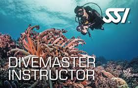 MasterInstructor